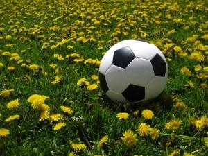 סמינריון מנהל עסקים כדורגל