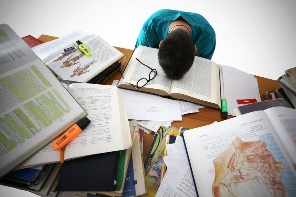 עבודה סמינריוניות בחינוך